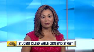 Middle school student struck, killed running across street in Tampa - Video