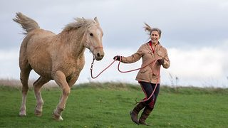Woman hospitalised due to horse allergy overcomes condition thanks to hypoallergenic crossbreed - Video
