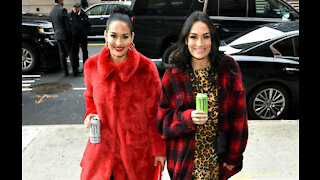 Nikki and Brie Bella could make wrestling comeback with sons