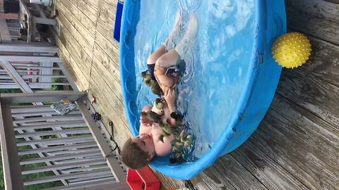 Boy Laughs As Several Ducklings Crawl Over Him In Swimming Pool
