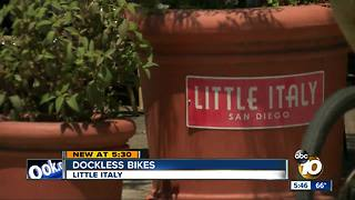 Little Italy littered by dockless bikes - Video