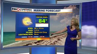 Breezy Weekend Ahead - Video