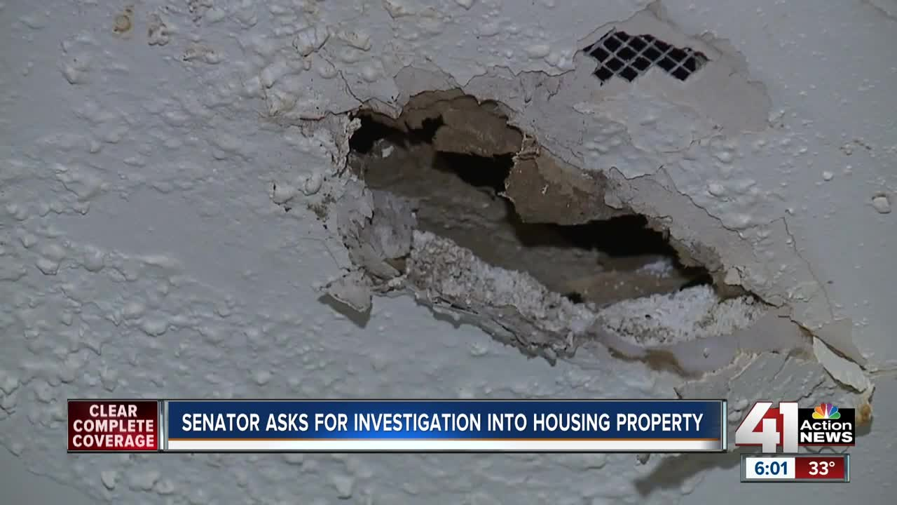 Sen. Hawley pushes for federal investigation into TEH Realty