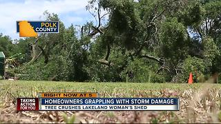 Strong winds damage property in Polk County - Video