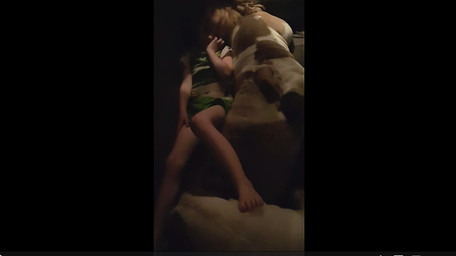 Little girl naps on top of three English Bulldogs - Video