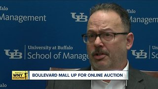 Boulevard Mall up for online auction