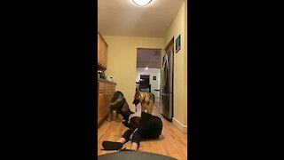 German Shepherd Tries To Save Fainted Owner