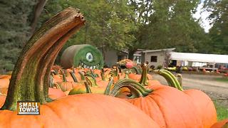 Small Towns: Blaser's Acres offers fall fun - Video