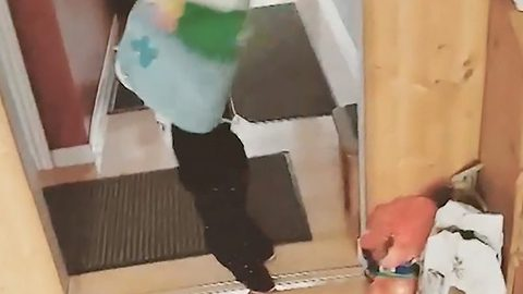 Toddler runs into wall while dad films