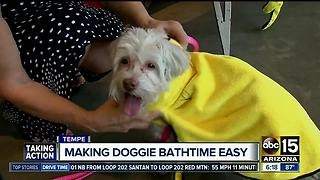 Valley woman selling bath robes for dogs, raising money for shelters - Video