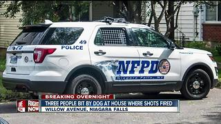 Niagara Falls police investigating shots fired at home and dog bite - Video