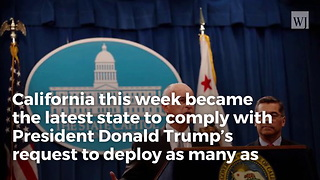 California Governor Reluctantly Agrees To Trump's Request, Deploys Troops To Us-mexico Border - Video
