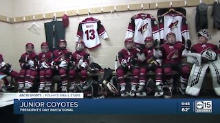 Fouhy's Small Stars: Junior Coyotes