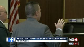 Hit-and-run driver sentenced to 10 years in prison - Video