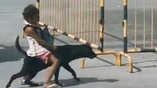 Little girl rides her dog home in Phlippines
