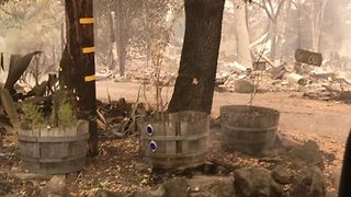 Santa Rosa Residents Survey Wildfire Damage as Death Toll Rises - Video