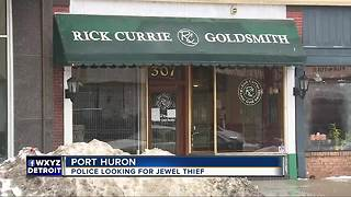 Port Huron police looking for jewelry thief - Video