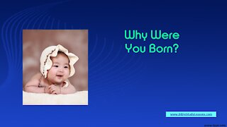Video Bible Study: Why Were You Born? Meaning/Purpose of Life