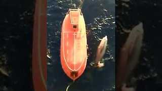 Crew Rescues Whale Trapped in Fishing Net in Skikda, Algeria - Video