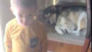 "Caring toddler tells his dog ""I Love You"" before leaving  - Video"