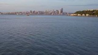 Drone Captures Humpback Whale Cruising in Seattle - Video