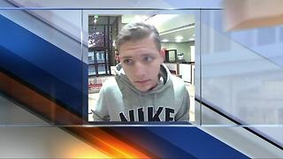 Annapolis bank robbery suspect captured in North Carolina - Video
