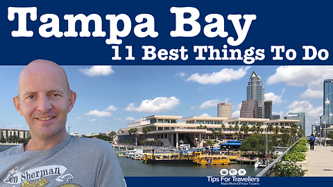 The 11 best thing to do in Tampa Bay, Florida