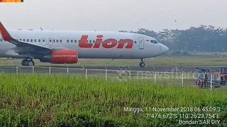 Planes halted on runway at Indonesian airport by invasion of birds - Video