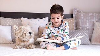 Reading To The Dog May Improve Your Child's Reading Skills