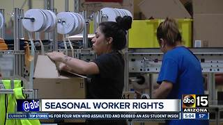 What are your holiday employment rights? - Video