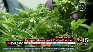L.A. to become largest city to legalize pot - Video