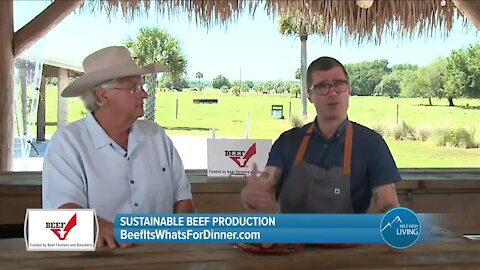 Can Beef Be Sustainable? // Beef It's What's For Dinner