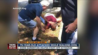 Deputies arrest Palm Harbor man after he choked an elderly woman walking her dog - Video