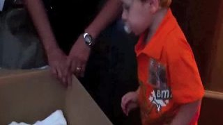 A Tot Boy Doesn't Want A New Baby Sister As His Birthday Present - Video