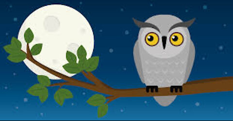 Night Owls - May 6, 2021 - Part 1 and 2