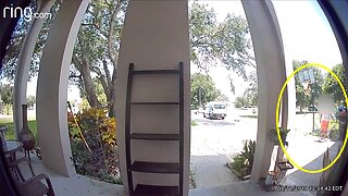 DOORBELL CCTV FOOTAGE SHOWS AMAZON DRIVER TAKING CHILD'S BIKE FROM DRIVEWAY