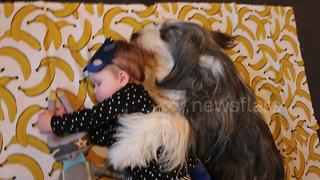 Dog spoons baby during 'nap time' - Video