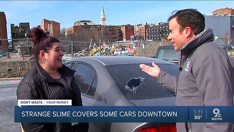 What is that sticky slime covering cars downtown?