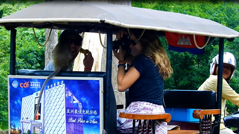 Monkey Like Tourists Because Of Their Food