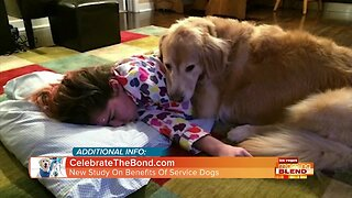 Benefits Of Service Dogs!