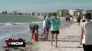 Chilly start to Tampa Bay spring break 2018 - Video