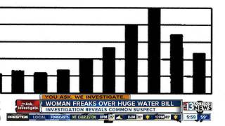 Massive water bill reveals common problem - Video