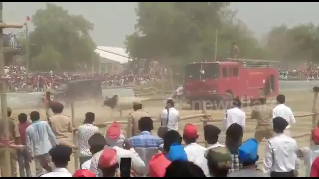 Stray bull goes on rampage at political rally in northern India