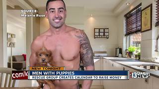 Men with puppies calendar - Video
