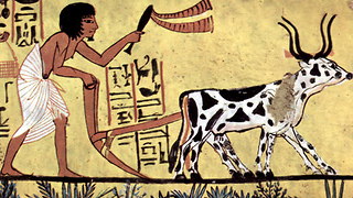 10 Inventions You Had No Idea They Come From Ancient Egypt - Video
