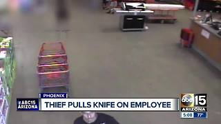 Thief pulls knife on employee at Phoenix Home Depot - Video