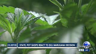 US Attorney for Colorado won't change marijuana approach; Gardner irate over Sessions' decision - Video