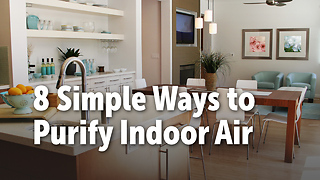 8 Simple Ways to  Purify Indoor Air - Video