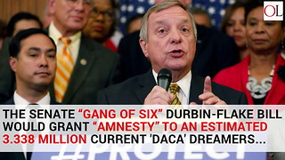 House And Senate Daca 'Amnesty' Legislation Presents Starkly Different Options - Video