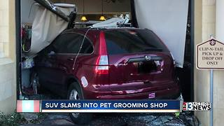 SUV slams into Clip-N-Tails grooming shop - Video